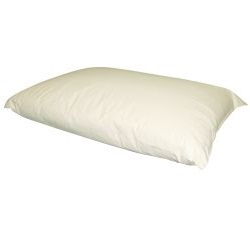 Wipeclean-Pillow